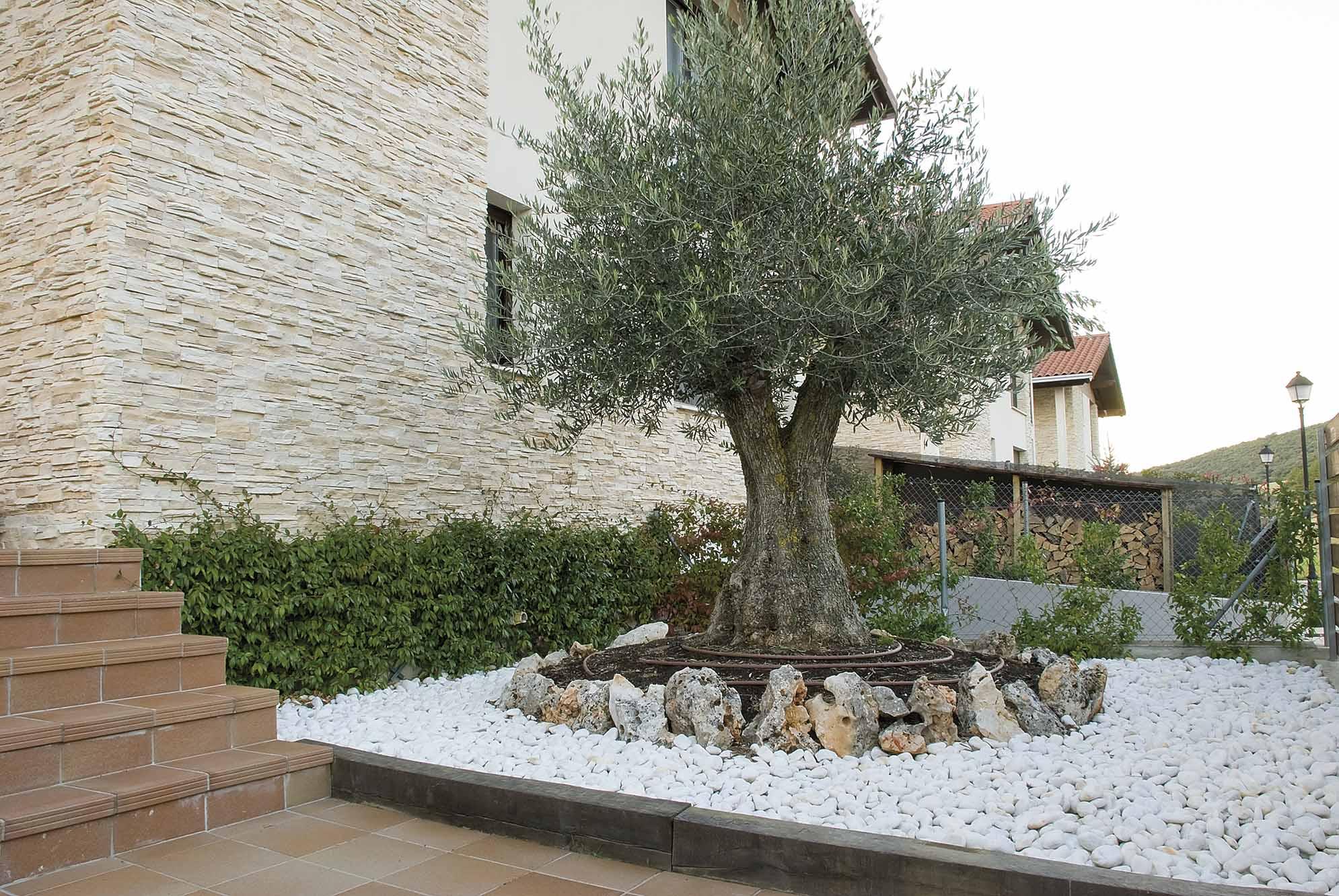aridos-jardin-bajo-mantenimiento-8