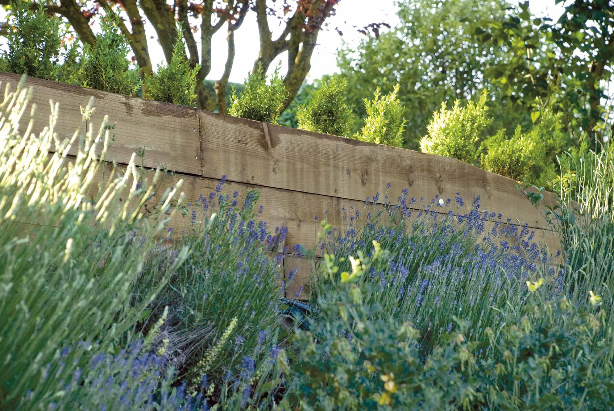 taludes-jardin-bajo-manteniemiento-5